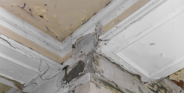 Roof Damage Insurance Claims - Jenkins Law, PL | Claims Lawyer